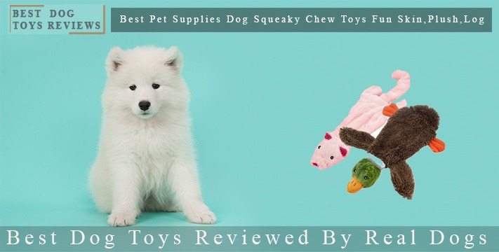 Best Dog Toys Reviewed By Real Dogs