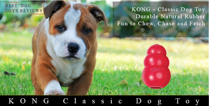 KONG Classic Dog Toy, Durable Natural Rubber