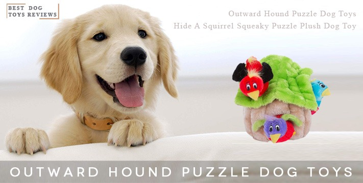 Outward Hound Puzzle Toys | Hide A Squirrel Squeaky Puzzle Plush Dog Toy